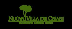 Logo Nuova Villa dei Cesari